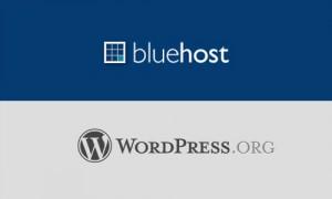 bluehost best top wordpress hosting blog server host